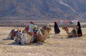 dahab-beduini