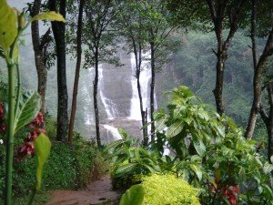 Отдых в джунглях Таиланда