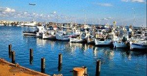 larnaka-port