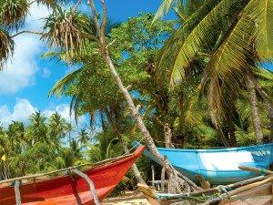 экскурсии и отдых на Шри-Ланке
