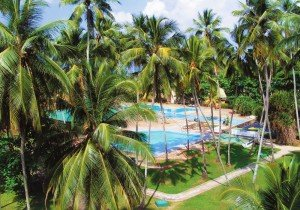 Забронировать отдых на Шри-Ланке