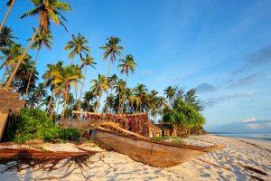 Wooden sailboat (dhow) and palm trees on a tropical beach of Zanzibar island