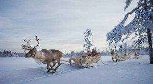 Путевка в Финляндию в феврале