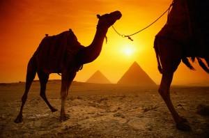Где дешевле отдыхать в Египте?